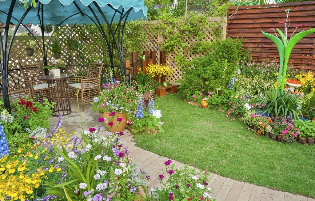 home backyard garden