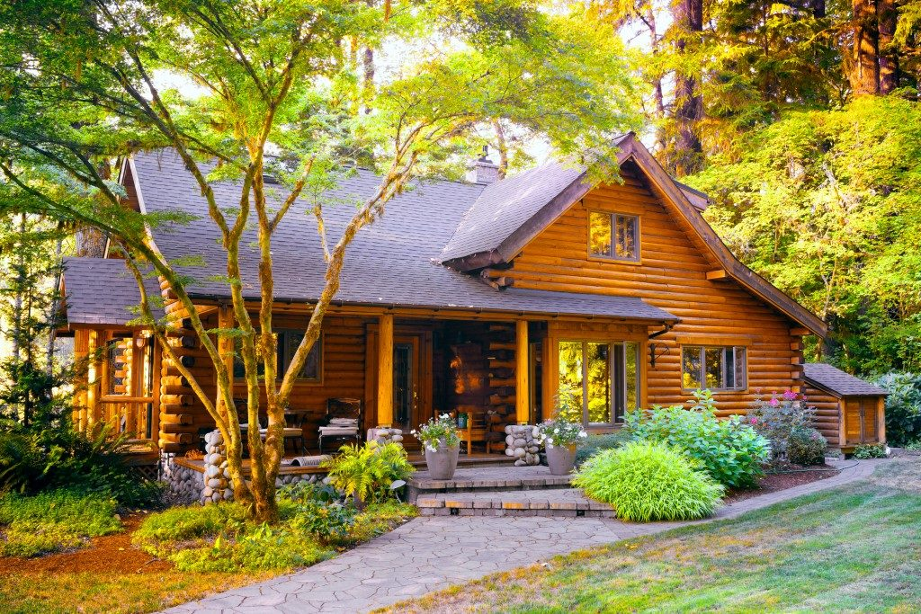 Rustic house and garden