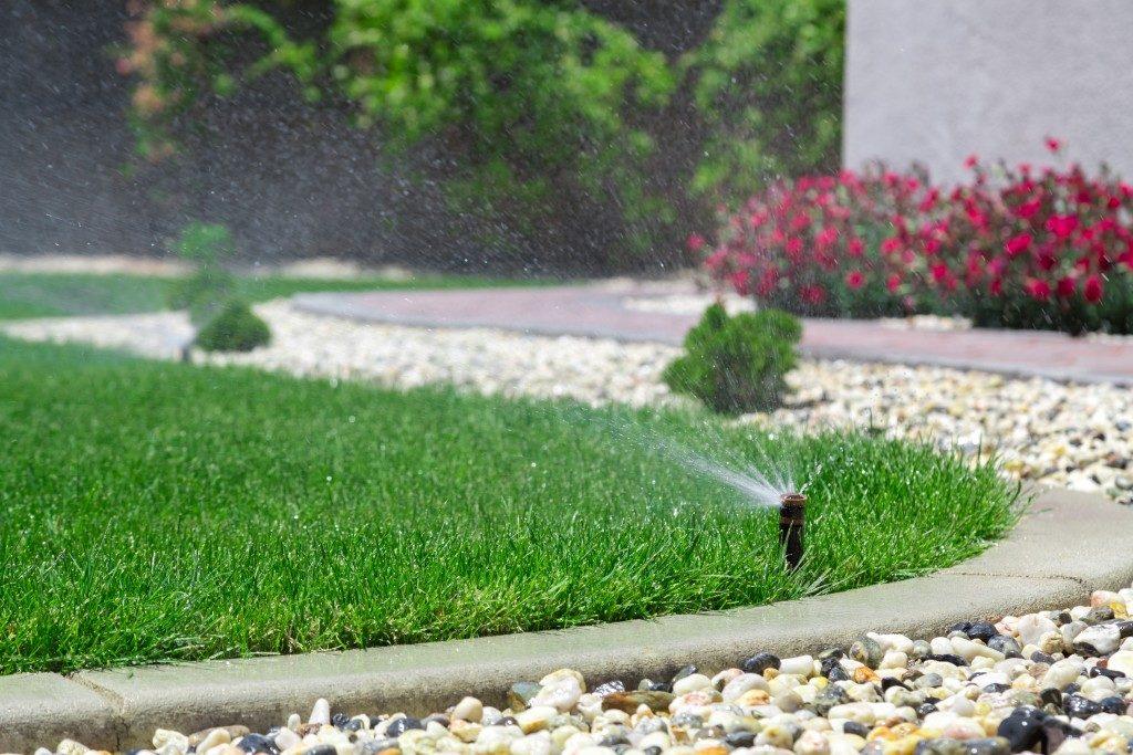Sprinkler in lawn