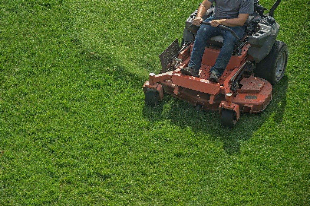 Man riding lawnmower in lawn